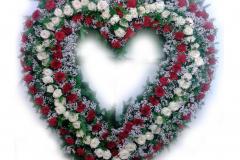 srdce velké